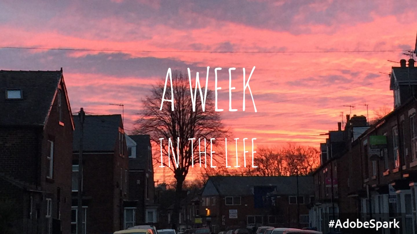 A Week in the Life