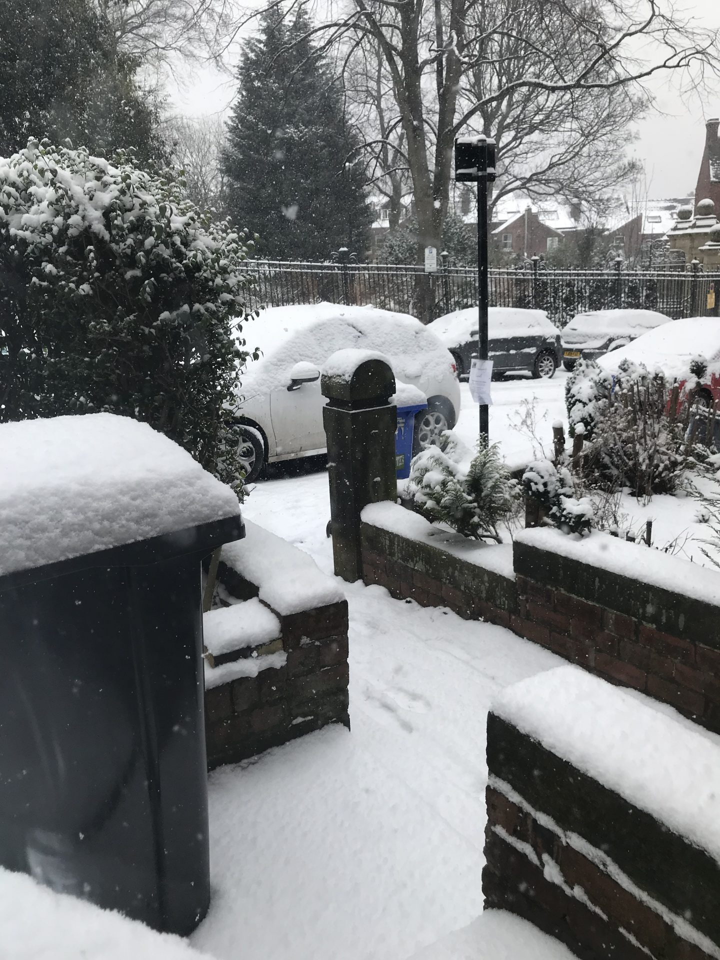 Sheffield snow